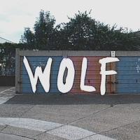 """NEW TUNES: Vineyard Cries - """"Wolf"""""""